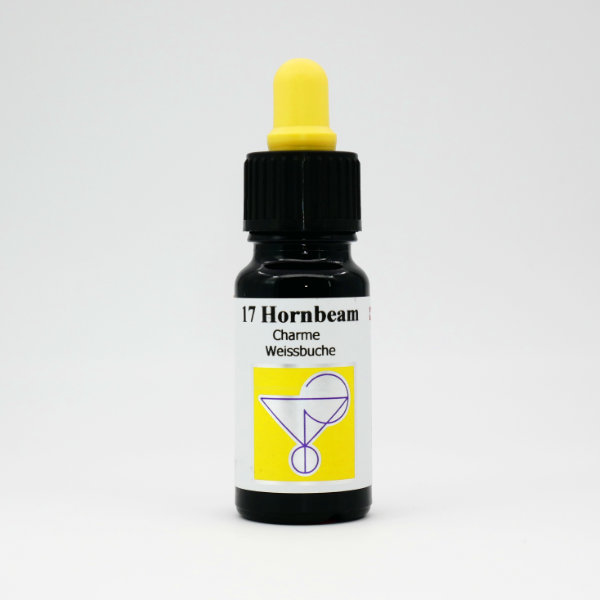 17 Weissbuche/Hainbuche